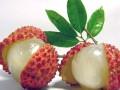 女人养颜最应吃的10种美容食品